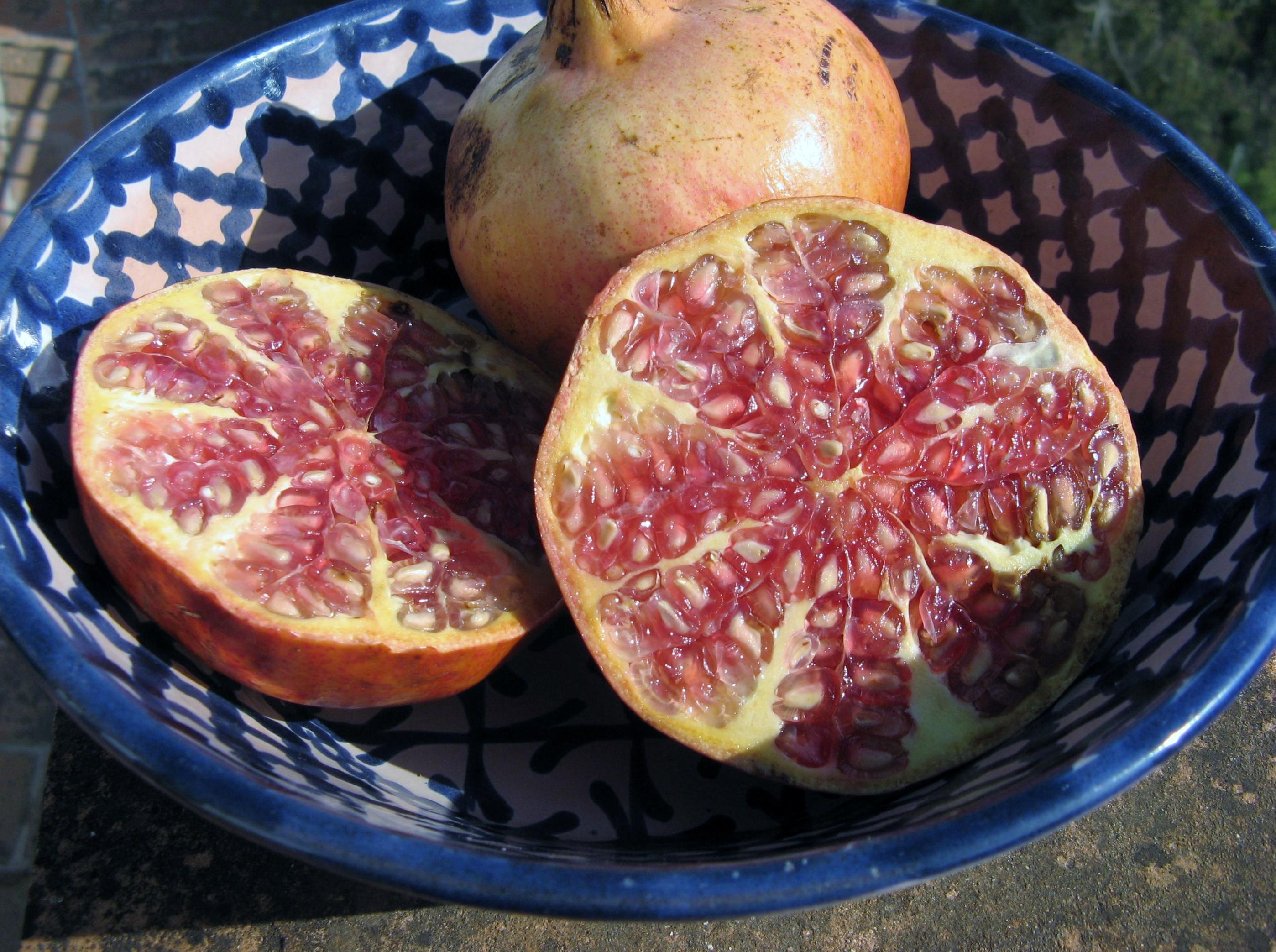 The Pomegranate Fruit Of Heaven Barbara Lamplugh